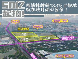 50亿起拍!桂城挂牌超13.3万㎡靓地