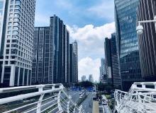 广东湛江市麻章区1宗娱乐用地挂牌出让 起拍价2.5亿元