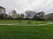 新松玺樾府丨植物园旁仅500席公园奢宅,营销中心华丽绽放