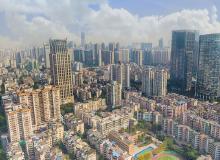 """龙光荣膺""""2020年度东莞市效益贡献企业"""""""